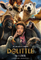 Dolittle SINK